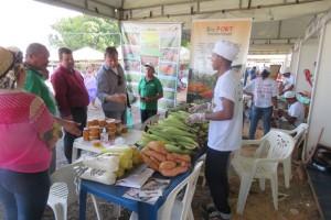 Foto4_Divulgação - Agritec Caxias